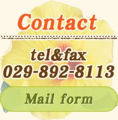 Contact Mail form
